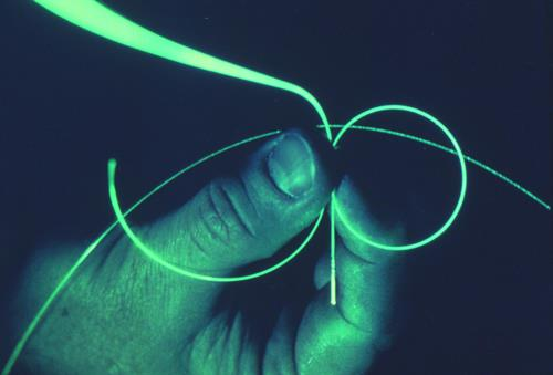 Fiber-optics use light pulses to transmit information through fiber lines.