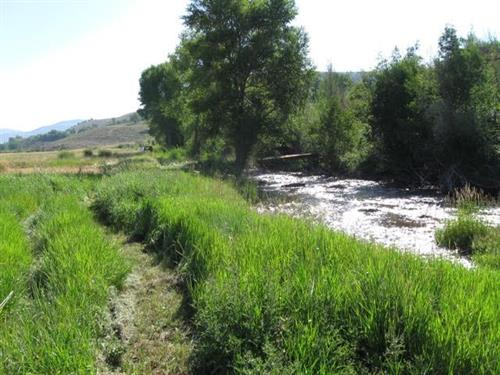 TBD County Road 76 Gunnison, CO 81230 - 14 Acres with Private Fishing Rights