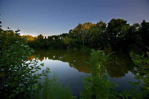 Pond at Cuneo