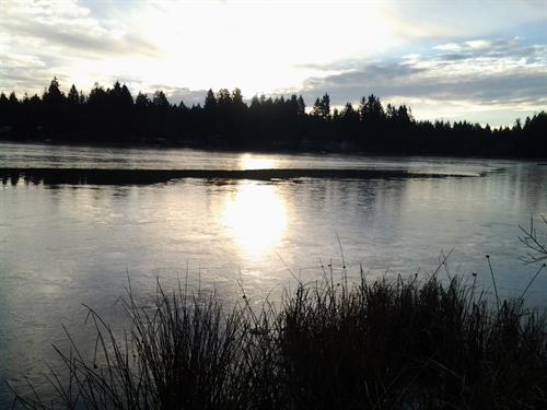 Limerick Iced Over January 2014