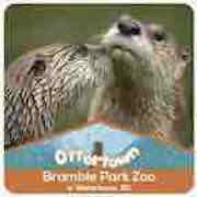 North America River Otters - Daryl and Olivier