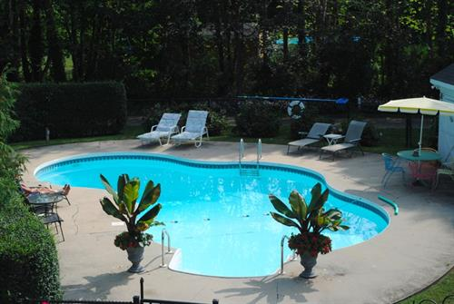 Large, in-ground pool