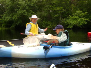 Dragonfly paddle event