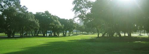 Your guest will sit comfortably under the shade trees and gaze down the 16th Fairway as you exchange your vows.