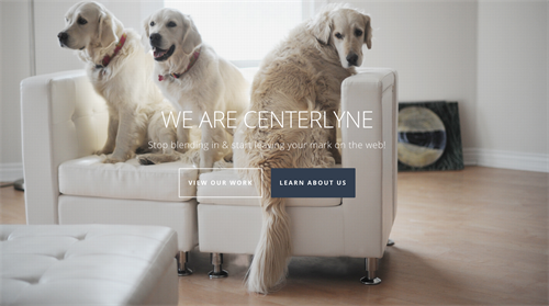We are CENTERLYNE - Stop blending in and start leaving your mark on the web!