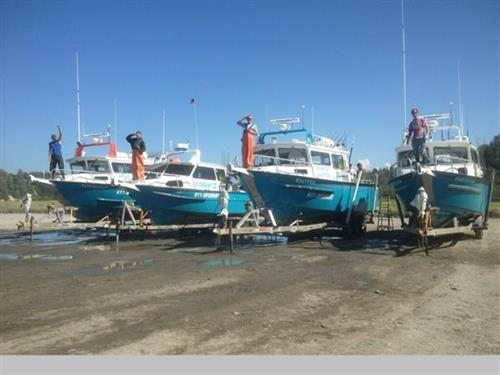 four halibut boats to serve you