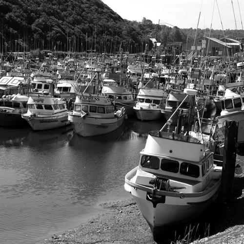 Gallery Image fishing_fleet_BandW.jpg