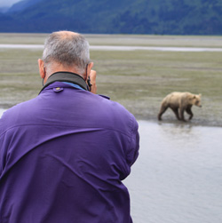 Bear viewing.