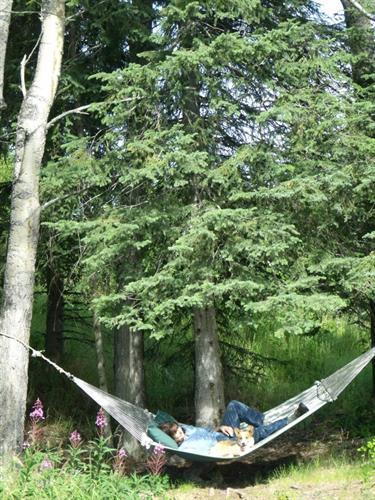Outside enjoying the hammock