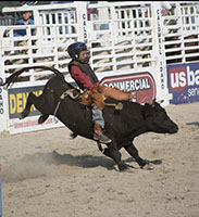 Jr. Rodeo Sunday
