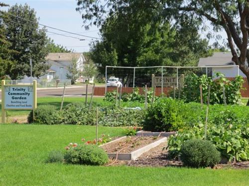 Trinity Community Gardens
