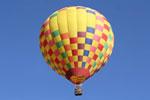 Eske's Paradise Balloons