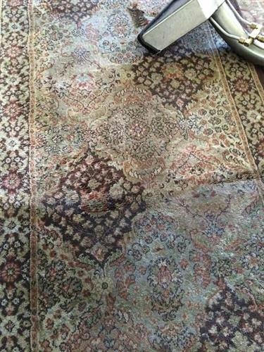 We do prefer to doing oriental rug in plant; However on site cleaning still has great result for almost a 10th of the cost.