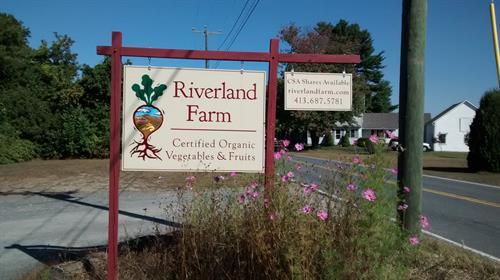 Riverland Farm, CSA shares available, Sunderland, MA