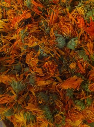 local calendula grown at Next Barn Over by Tory Field