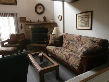 Lower Level Fireplace & Living Area