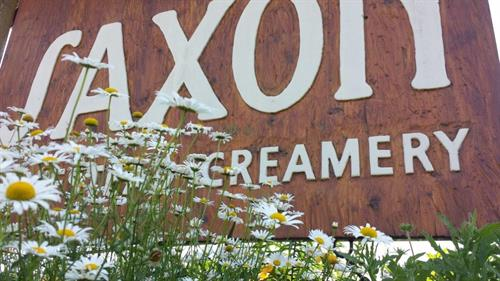 Welcome to Saxon Creamery!