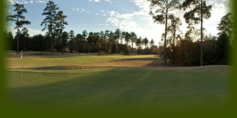 River pointe golf course country clubs golf courses for Riverpointe