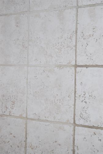 Tile and grout cleaning in center