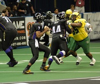 Fans love the fast-paced action and non-stop entertainment of arena football. Play begins in spring.