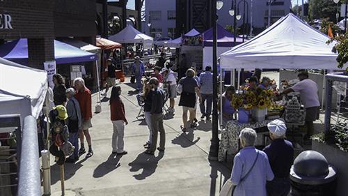 Busy Summer Market