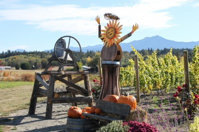 Olympic Cellars vineyard angel
