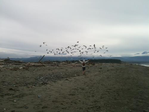 HIke the nearby Dungeness Spit, a wildlife an extraordinary wildlife preserve.
