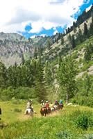 Wilderness Horse Camp (www.horse-camp.com)