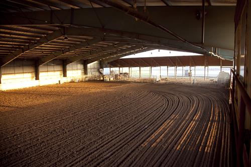 Our Large Riding Arena