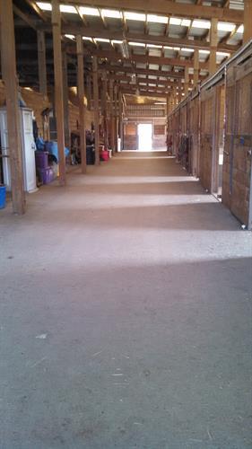 Inside main barn