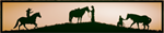 Wild Horse Mountain Ranch--A Mustang Rescue and Therapeutic Learning Center