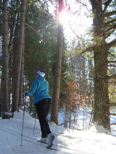 Soaring Eagle Ski Trails