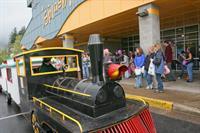 The Willamalane Train
