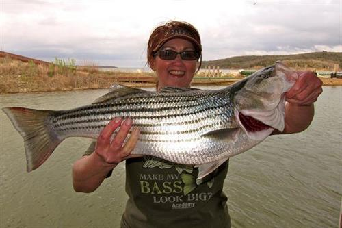 YES! Your shirt DOES make your bass look big!