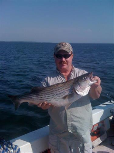 Adventure texoma small business fishing guides lake for Texoma fishing license