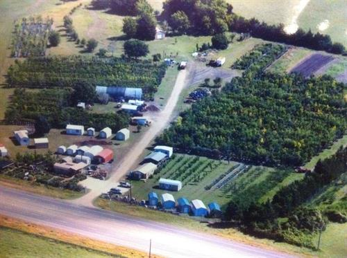 Aerial shot of Discount Trees circa 2009