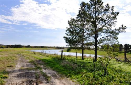 12 Acre Private Lake on 117 Acre Ranch