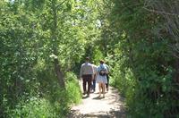 trail walks