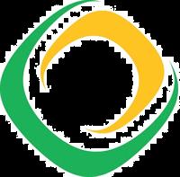 NFI Logo2