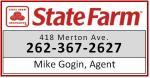 Mike Gogin Insurance, State Farm