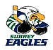 Surrey Eagles Hockey Club