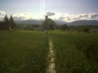 The West Wheat field