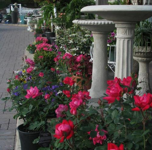 Find everything you need for your garden and landscape at Iowa Outdoor Products!