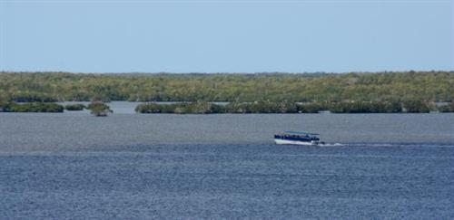 Scenic boat cruise in Everglades National Park
