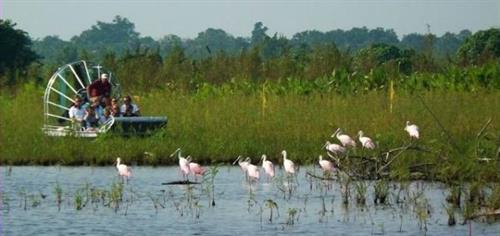 Airboat ride through the headwaters of the Western Everglades