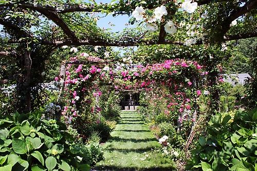 Northampton Massachusetts - Smith College Botanical Garden