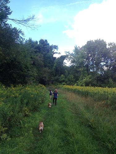 Grand Children enjoying Eastman Brook trail.