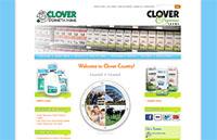 Website Hosting for CloverStornetta.com