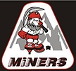 Rock Springs Amateur Hockey Association