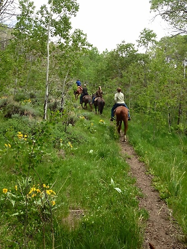 Half Moon Lake Lodge - Horseback Riding